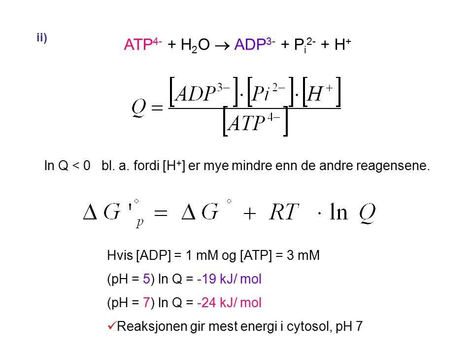 ii) ATP4- + H2O  ADP3- + Pi2- + H+ ln Q < 0 bl. a. fordi [H+] er mye mindre enn de andre reagensene.